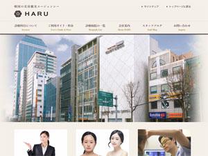 韓国の美容整形ツアー・HARU